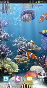 The real aquarium - Live Wallpaper-1