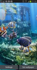 The real aquarium - Live Wallpaper-2