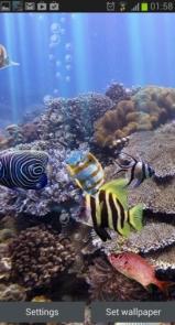 The real aquarium - Live Wallpaper-3