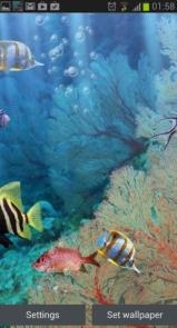 The real aquarium - Live Wallpaper-4