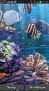 The real aquarium - Live Wallpaper-6