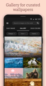 Bing-Wallpapers.2