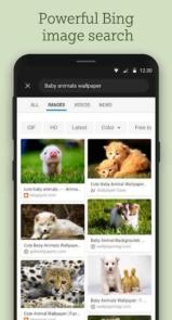 Bing-Wallpapers.7