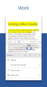 Microsoft Word-3